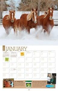 {cd981021-9a5d-4738-8ea0-e5e1cc5921d8}_Calendar