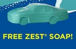 zest-300x195