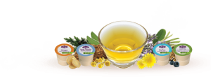 Free Samples of Yogi Tea